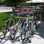 Alquiler de bicicletas 8